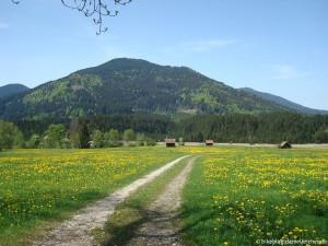 von-eschenlohe-um-die-ammergauer-alpen_01